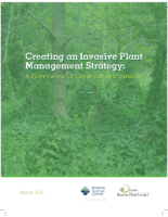 Creating an Invasive Plant Management Strategy: A Framework for Ontario Municipalities