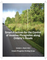 Smart practices for the control of Invasive Phragmites along roads
